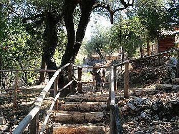 Askos Stone Park - Zoo - Natural Park - Volimes Zakynthos ...